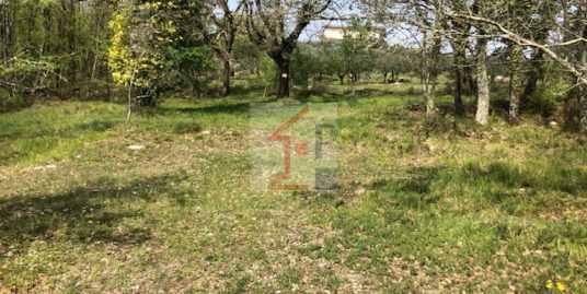 Terreno in vendita ad Arpino