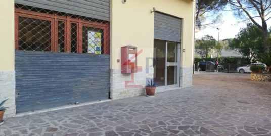 Locale in vendita e in affitto a Monte San Giov.Campano